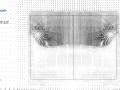 Ahmed Model_25-SA_Velocity_X80